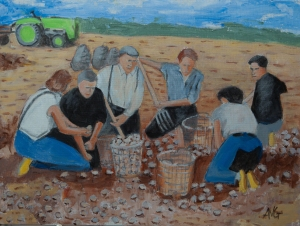 Potato harvester Zalk Nl. 30x40 cm Acryl board