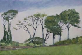 Irish landscape 40x60 cm acryl canvas
