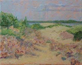 Dune Hoek van Holland Nl. 40x50 cm acryl canvas