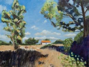 Shed Kefalonia Gr. 30x40 cm acryl board